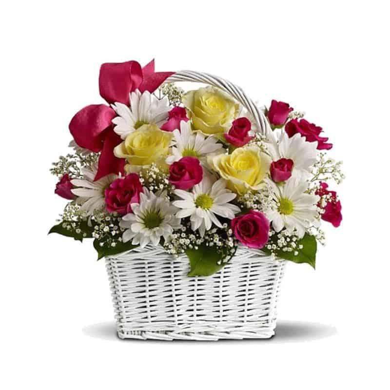 love centro, centro de margaritas y rosas bicolores, flores online