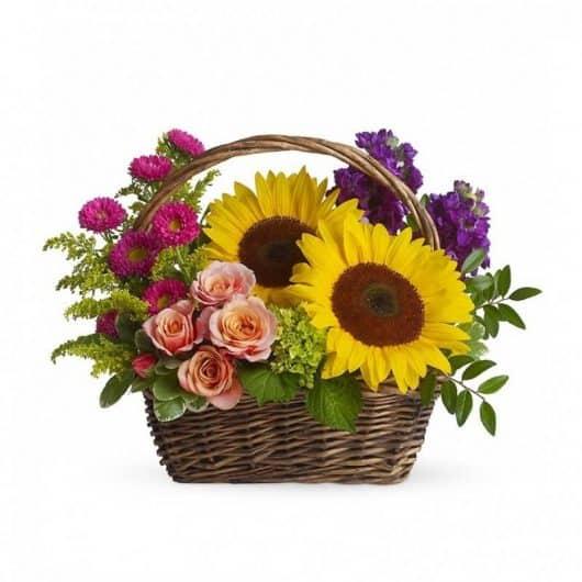 cesto de girasol con rosas y dragonarias aromáticas