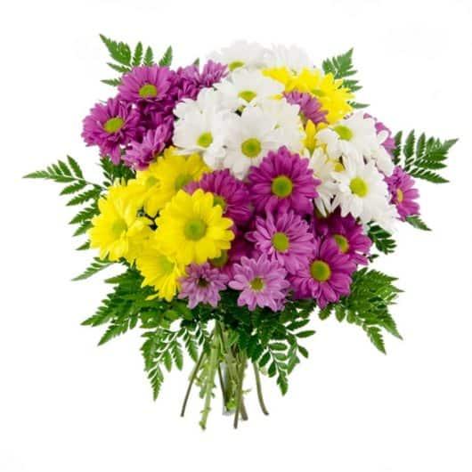 ramo de flores margaritas variadas y sencillas para regalar