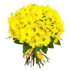 ramo de margaritas amarillas para regalar