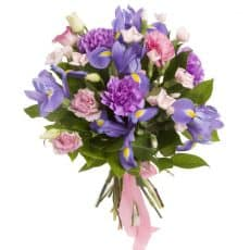 ramo de iris con clavel morado y rosado