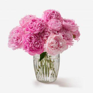 ramo de peonías rosados a domicilio, envío de peonías Madrid, comprar peonías