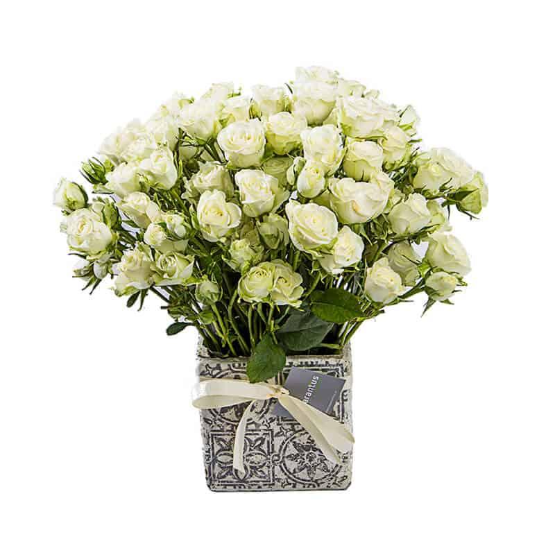ramo de rosas mini blanco