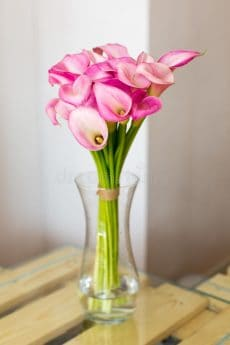 ramo de calas rosados