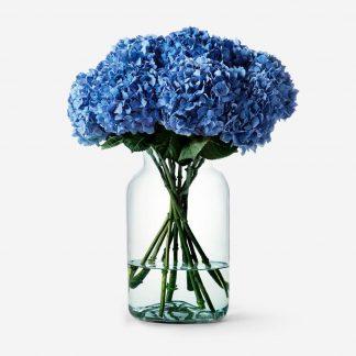 ramo de hortensias a domicilio Madrid, hydrangeas naturales, hortensias naturales, envío de hortensias Madrid mismo día