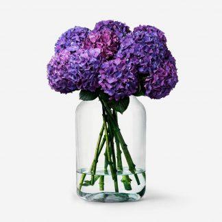 hortensias purple a domicilio, hortensias naturales online, ramo de hortensias frescas, envío de hortensias Madrid