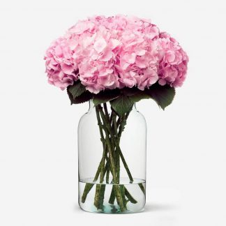 HORTENSIAS ROSADOS A DOMICILIO, ramo de hortensias rosados, envío de hortensias rosados Madrid