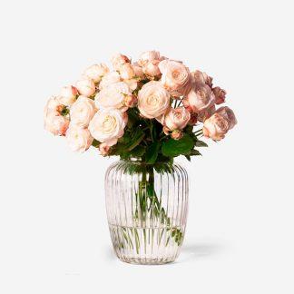 Envío de rosas mini a domicilio, rosas pitimini crema Madrid, rosas ramificadas Madrid