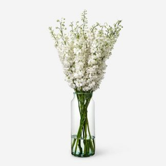 Ramo de delphinium blanco a domicilio Madrid, delphinium blanco natural para regalar